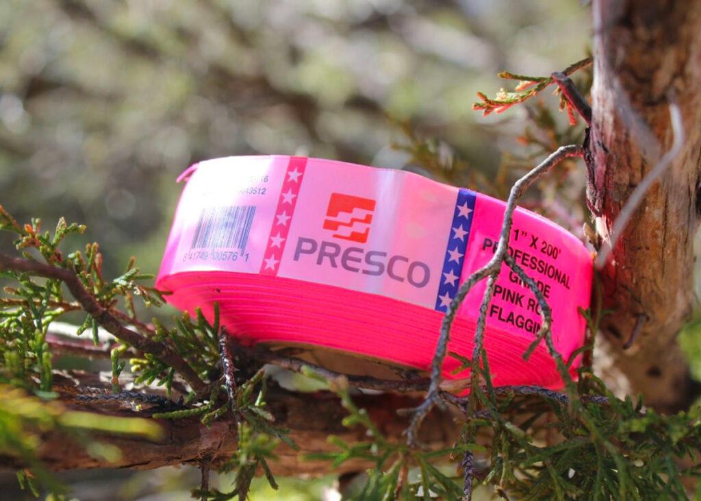 Presco pink flagging ribbon sitting on a tree branch.